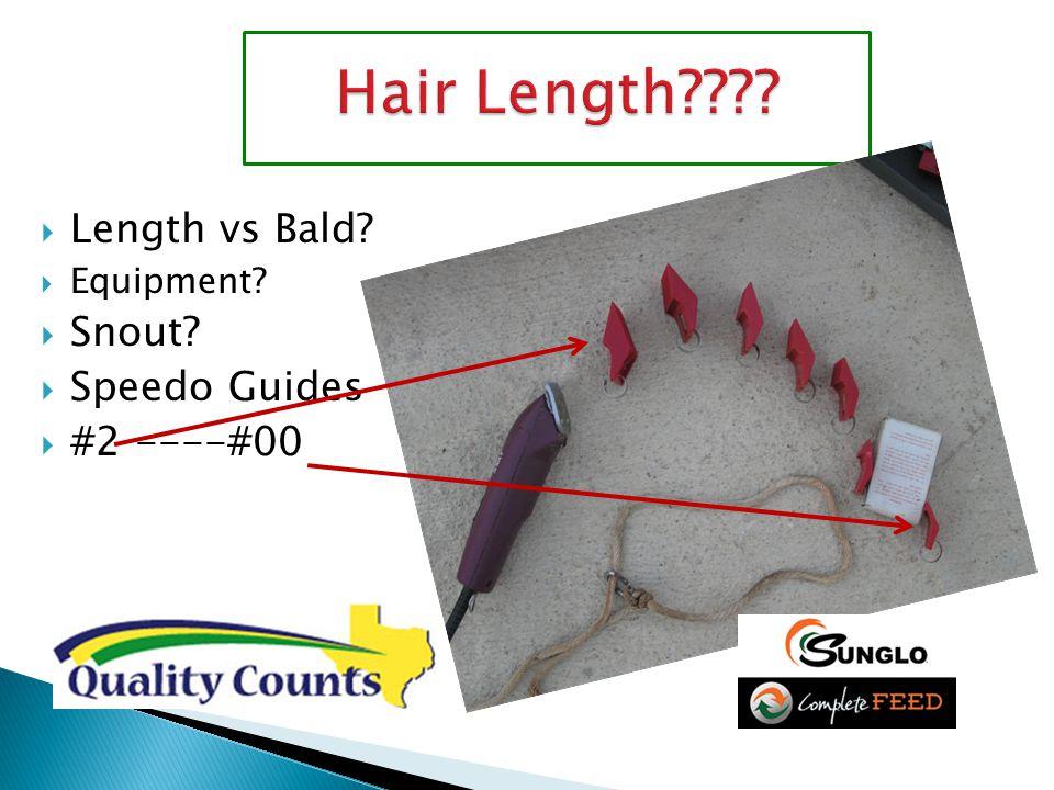  Length vs Bald?  Equipment?  Snout?  Speedo Guides  #2 ----#00