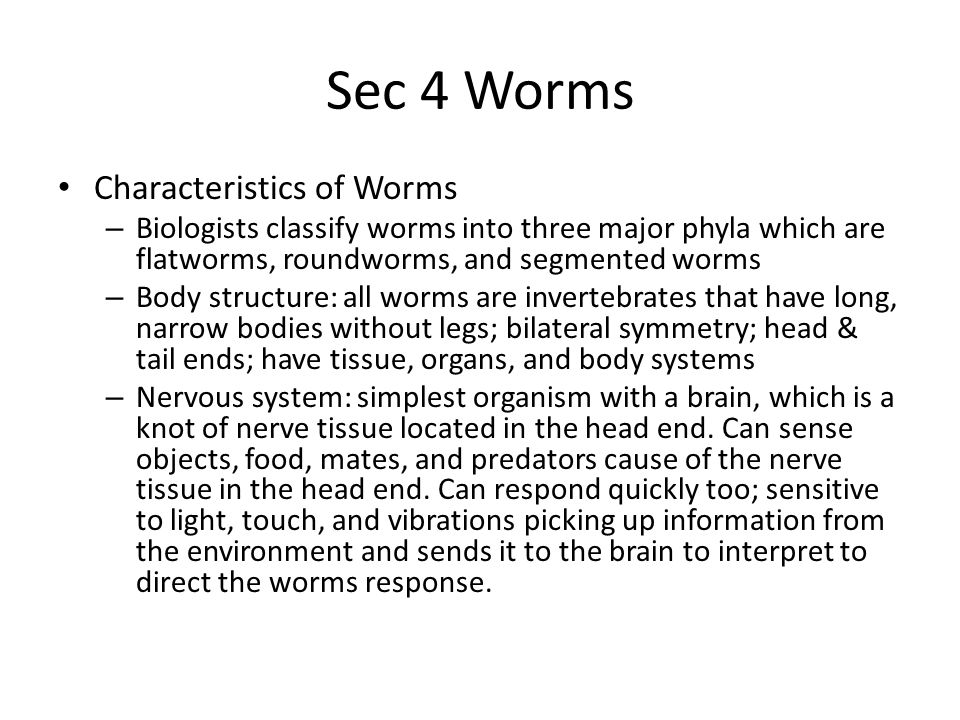 Sec 4 Worms Characteristics of Worms – Biologists classify worms into three major phyla which are flatworms, roundworms, and segmented worms – Body st