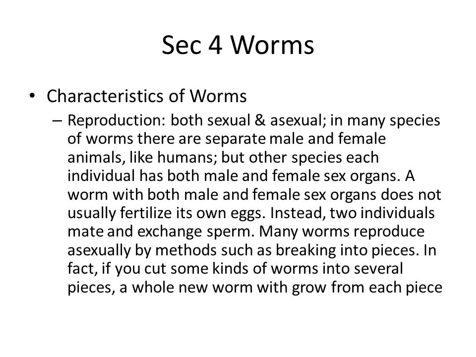 Sec 4 Worms Characteristics of Worms – Reproduction: both sexual & asexual; in many species of worms there are separate male and female animals, like