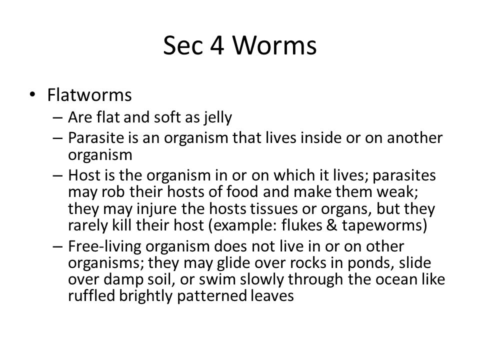 Sec 4 Worms Flatworms – Are flat and soft as jelly – Parasite is an organism that lives inside or on another organism – Host is the organism in or on