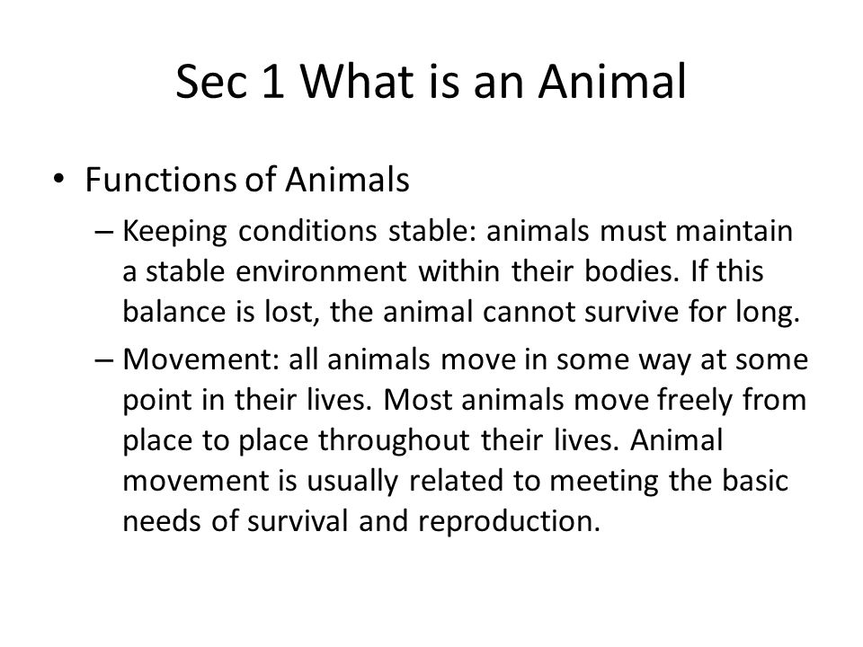 Sec 1 What is an Animal Functions of Animals – Keeping conditions stable: animals must maintain a stable environment within their bodies. If this bala