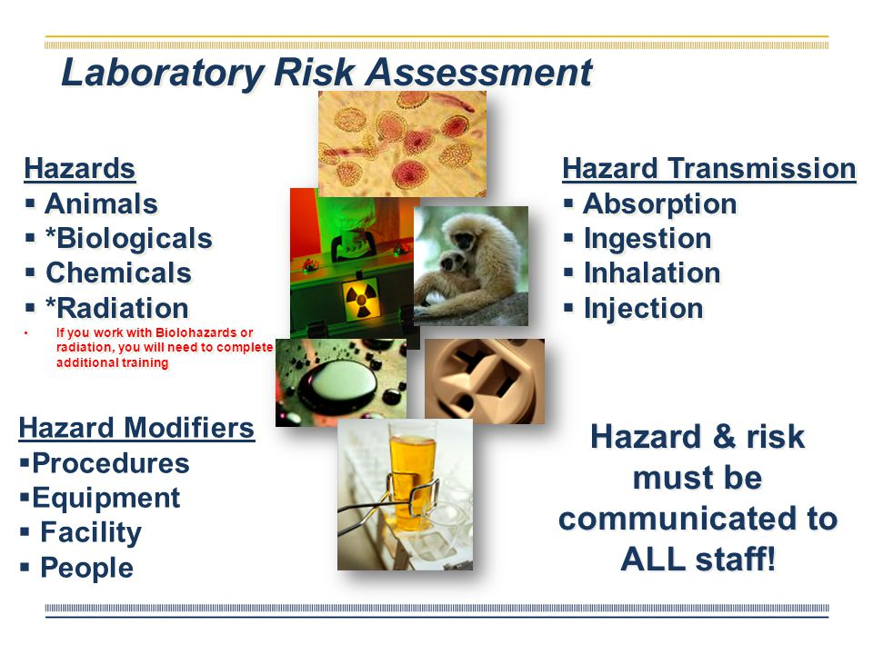 Laboratory Safety Risk Management & Safety 631-5037 http://riskmanagement.nd.edu Training Includes Chemical and General Lab Safety, Emergency Response, Personal Protective Equipment and Hazardous Waste Management Training