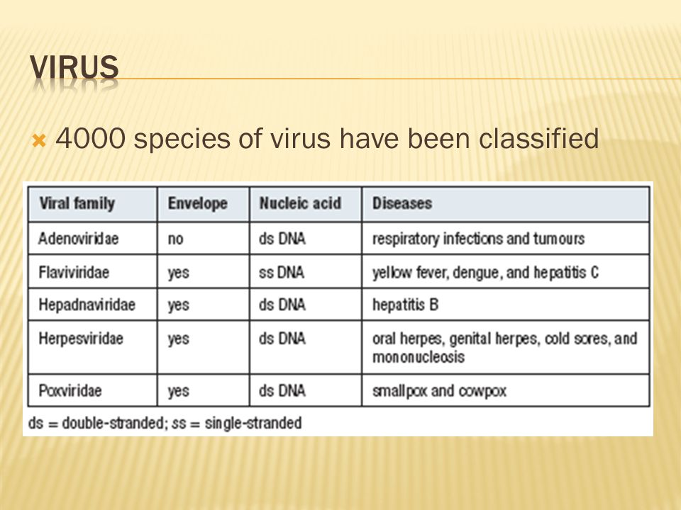  4000 species of virus have been classified
