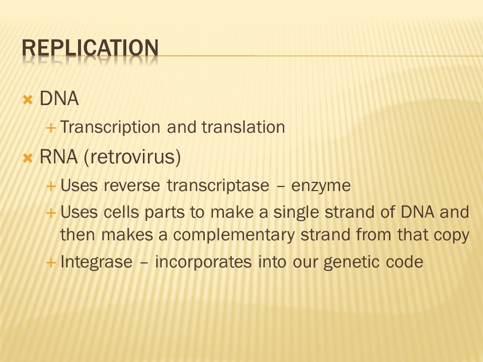  DNA  Transcription and translation  RNA (retrovirus)  Uses reverse transcriptase – enzyme  Uses cells parts to make a single strand of DNA and t