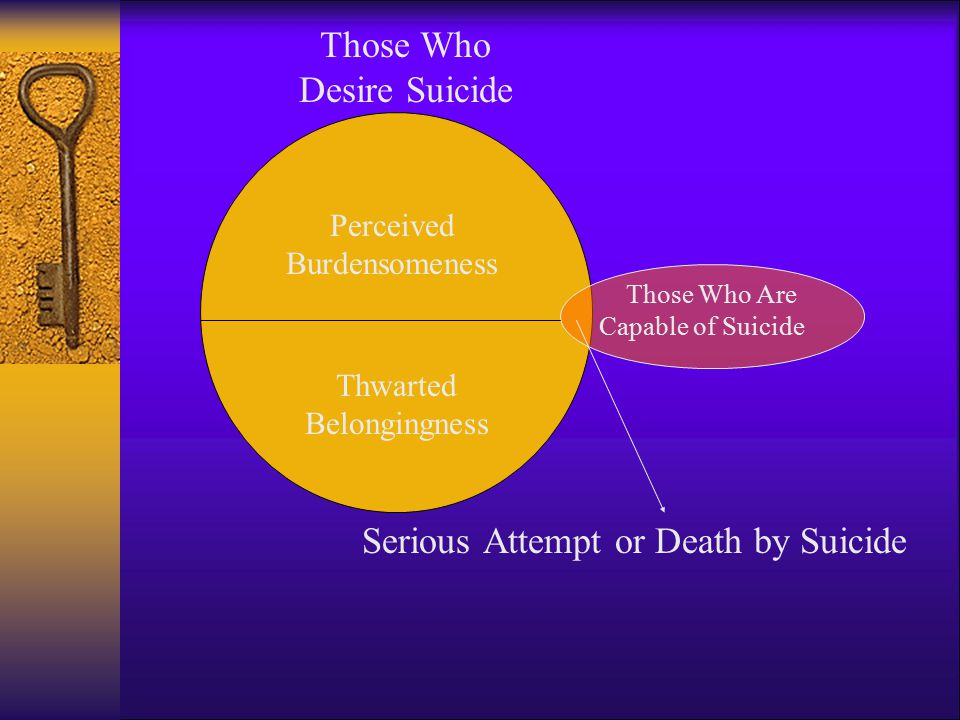 Serious Attempt or Death by Suicide Those Who Desire Suicide Those Who Are Capable of Suicide Perceived Burdensomeness Thwarted Belongingness
