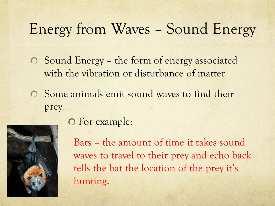 Energy from Waves – Sound Energy Sound Energy – the form of energy associated with the vibration or disturbance of matter Some animals emit sound wave