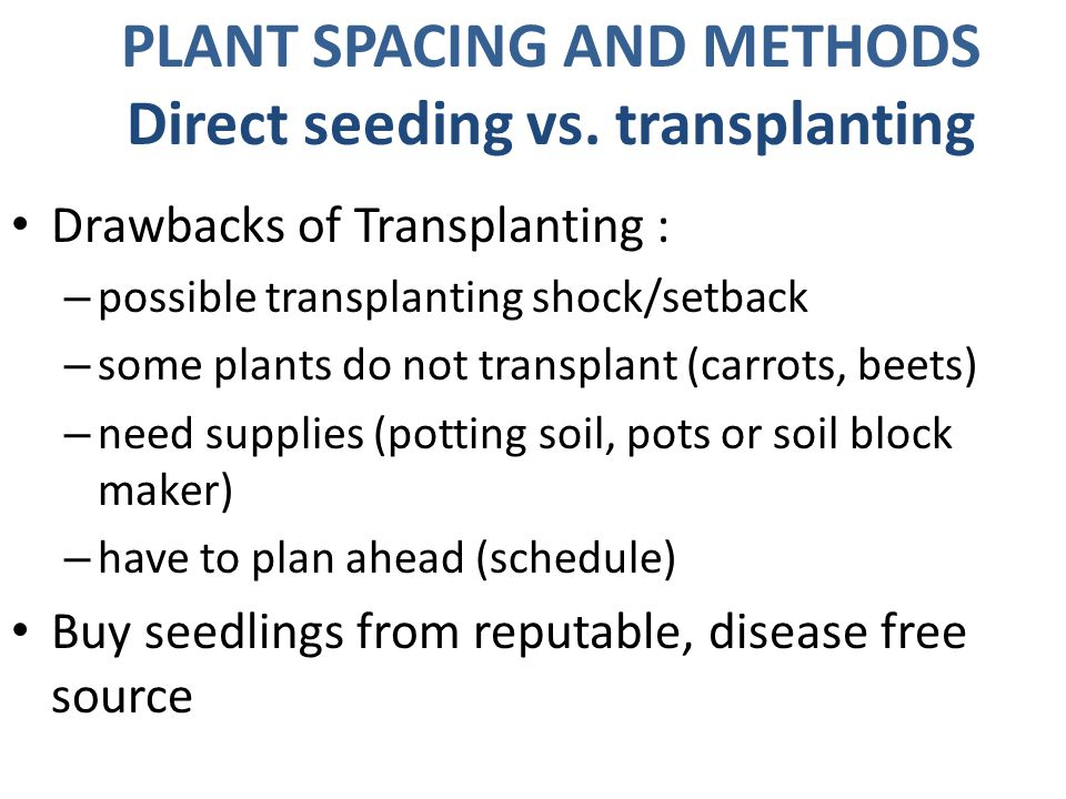 Drawbacks of Transplanting : – possible transplanting shock/setback – some plants do not transplant (carrots, beets) – need supplies (potting soil, pots or soil block maker) – have to plan ahead (schedule) Buy seedlings from reputable, disease free source PLANT SPACING AND METHODS Direct seeding vs.