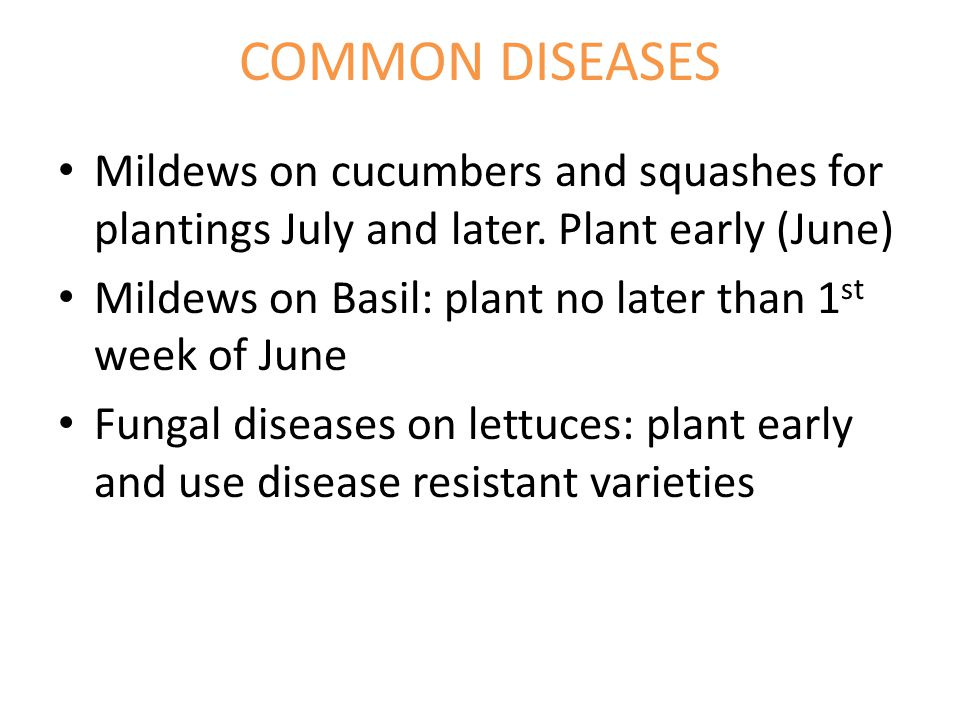 COMMON DISEASES Mildews on cucumbers and squashes for plantings July and later.