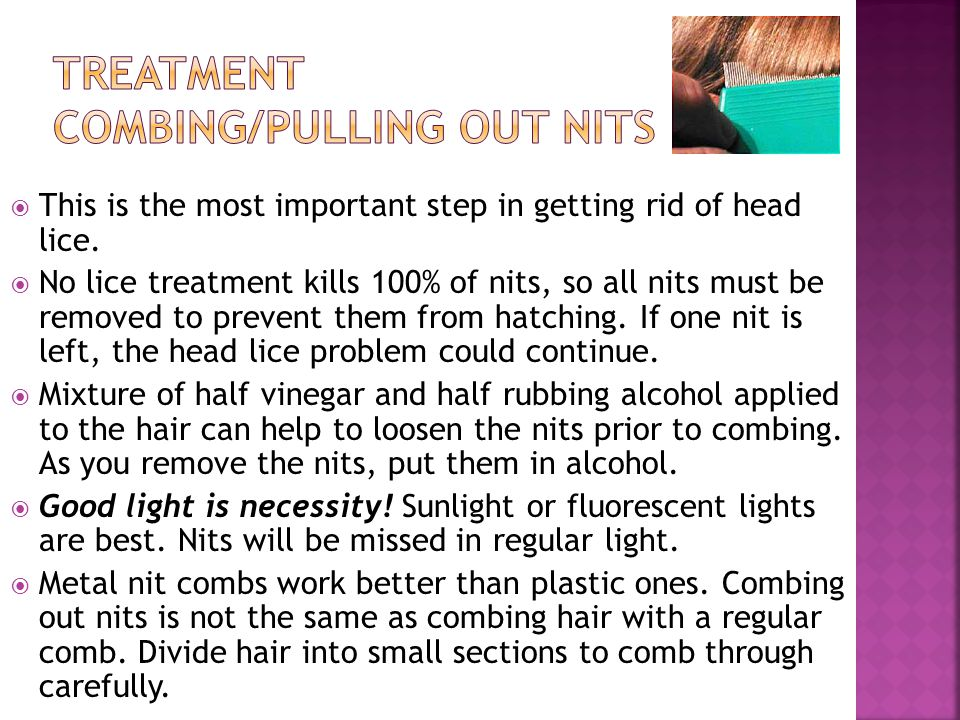  This is the most important step in getting rid of head lice.