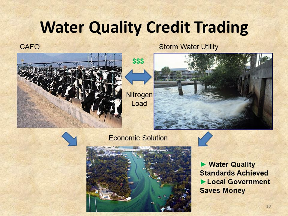 Water Quality Credit Trading 10 CAFOStorm Water Utility Economic Solution $$$ Nitrogen Load ► Water Quality Standards Achieved ►Local Government Saves
