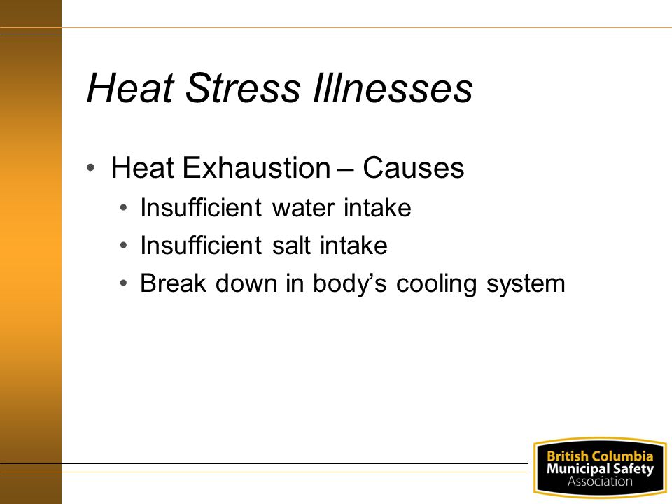 Heat Stress Illnesses Heat Exhaustion – Causes Insufficient water intake Insufficient salt intake Break down in body's cooling system
