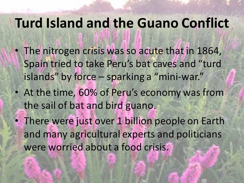 Turd Island and the Guano Conflict The nitrogen crisis was so acute that in 1864, Spain tried to take Peru's bat caves and turd islands by force – sparking a mini-war. At the time, 60% of Peru's economy was from the sail of bat and bird guano.