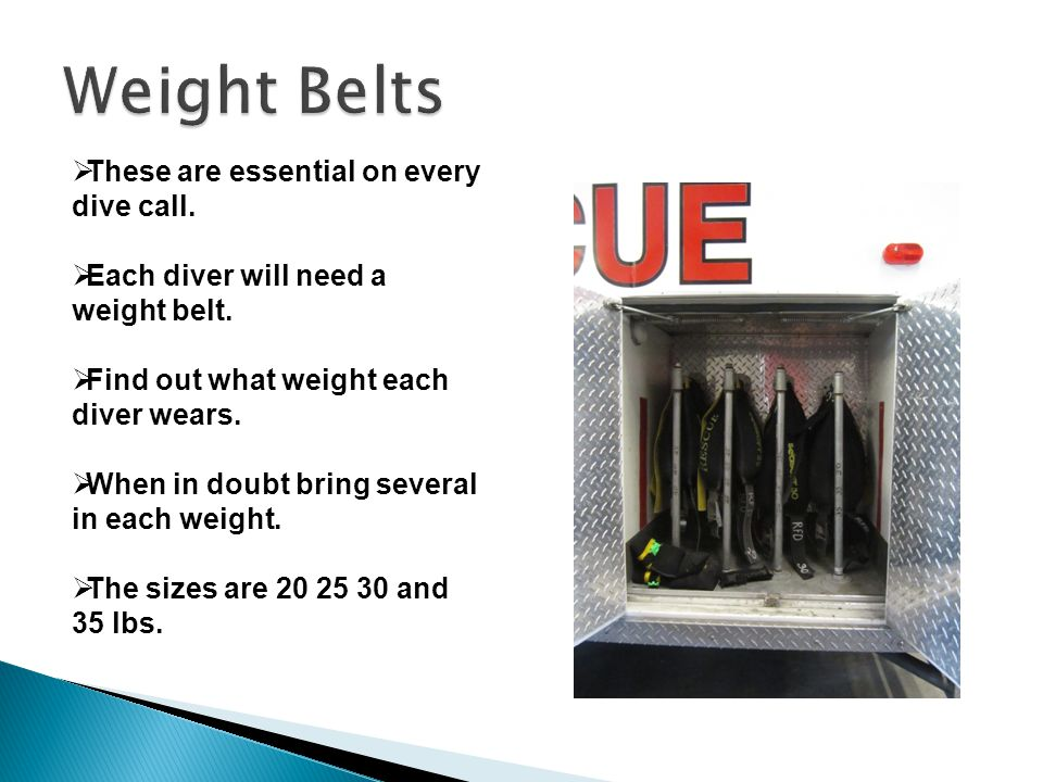  These are essential on every dive call.  Each diver will need a weight belt.
