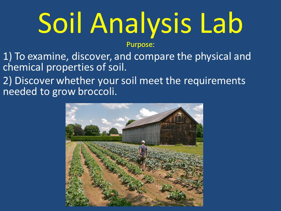 Soil Analysis Lab Purpose: 1) To examine, discover, and compare the physical and chemical properties of soil.