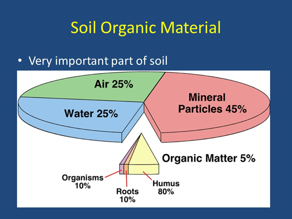 Soil Organic Material Very important part of soil