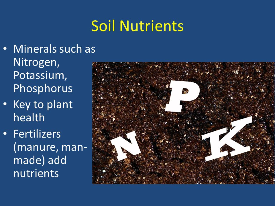 Soil Nutrients Minerals such as Nitrogen, Potassium, Phosphorus Key to plant health Fertilizers (manure, man- made) add nutrients