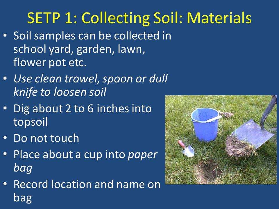 SETP 1: Collecting Soil: Materials Soil samples can be collected in school yard, garden, lawn, flower pot etc.