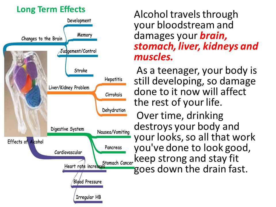 Long Term Effects Alcohol travels through your bloodstream and damages your brain, stomach, liver, kidneys and muscles.