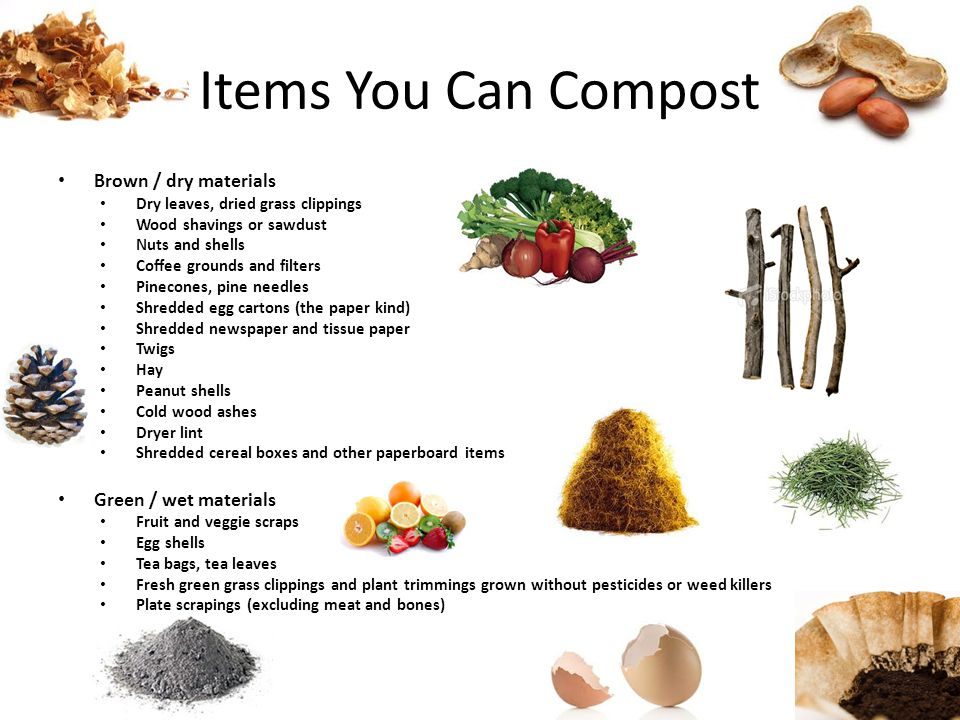 Items You Can Compost Brown / dry materials Dry leaves, dried grass clippings Wood shavings or sawdust Nuts and shells Coffee grounds and filters Pine