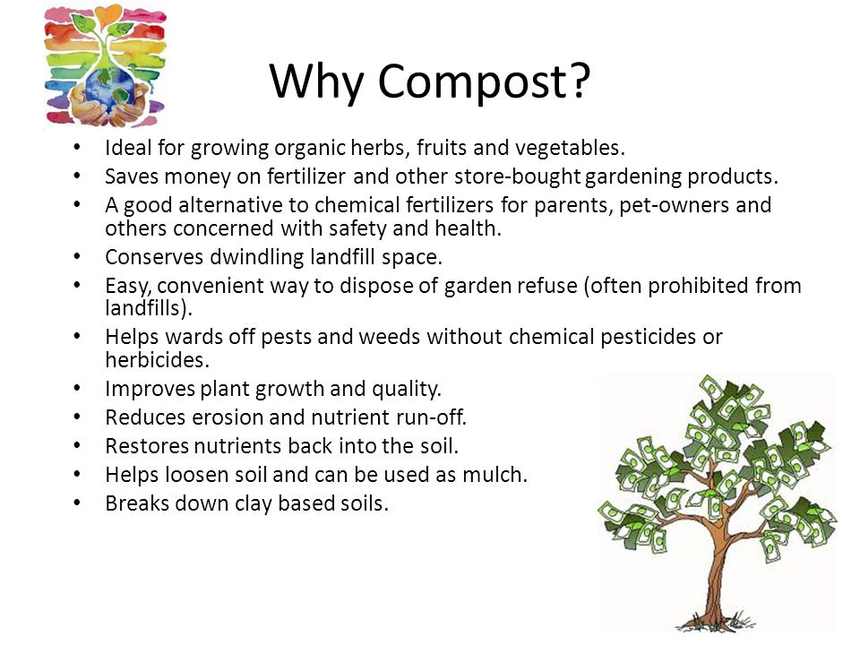 Why Compost. Ideal for growing organic herbs, fruits and vegetables.