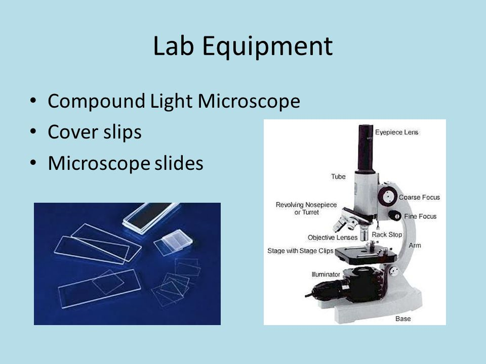 Lab Equipment Compound Light Microscope Cover slips Microscope slides