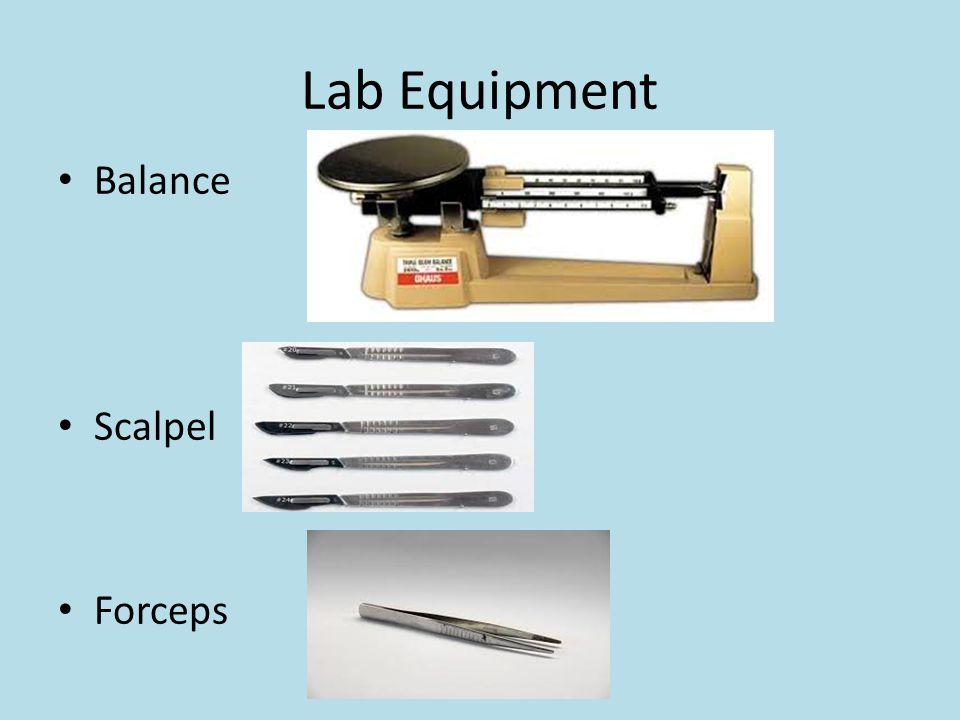 Lab Equipment Balance Scalpel Forceps