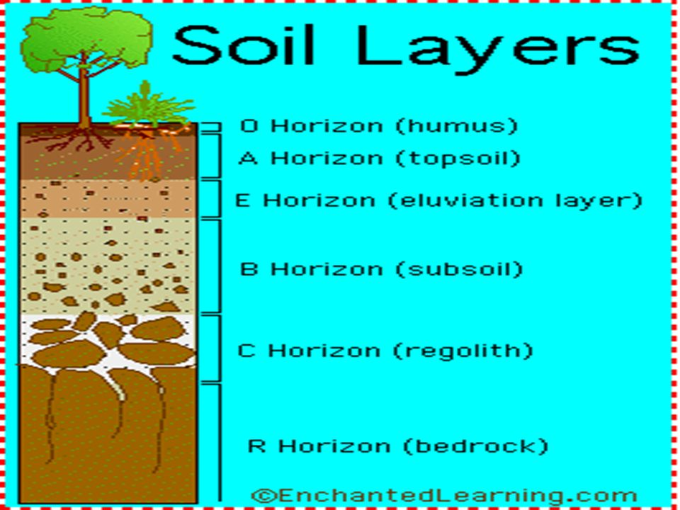 SOIL HORIZONS As you dig a deep hole in the ground, you will notice that the deeper soil looks different. The deeper you go, you will find larger rock