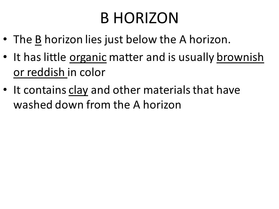 A HORIZON The A horizon is the upper layer of soil and is commonly called topsoil It contains the most organic matter of the three layers Because of t