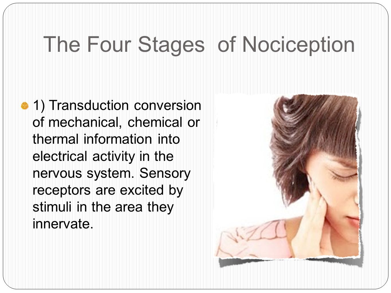 The Four Stages of Nociception 1) Transduction conversion of mechanical, chemical or thermal information into electrical activity in the nervous system.