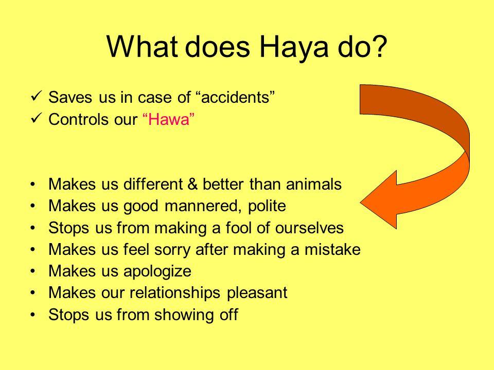 HAYA Part 3