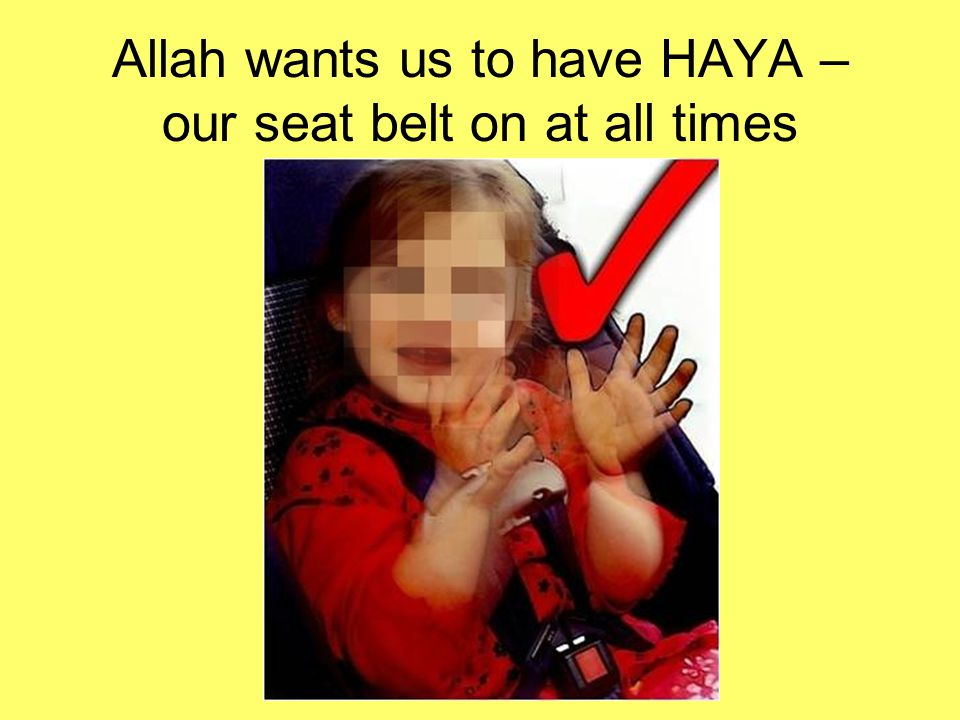 Allah wants us to have HAYA – our seat belt on at all times