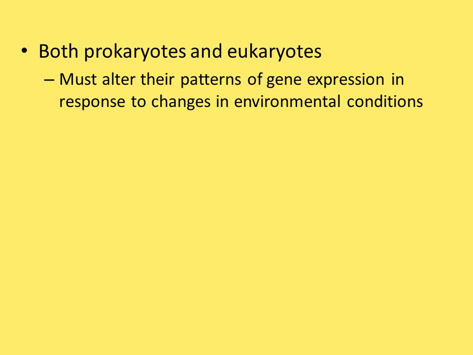 Some specific transcription factors function as repressors – To inhibit expression of a particular gene Some activators and repressors – Act indirectly by influencing chromatin structure