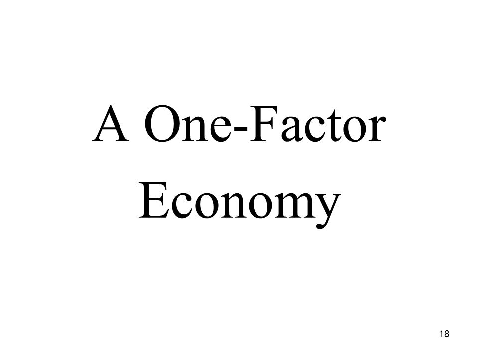 18 A One-Factor Economy