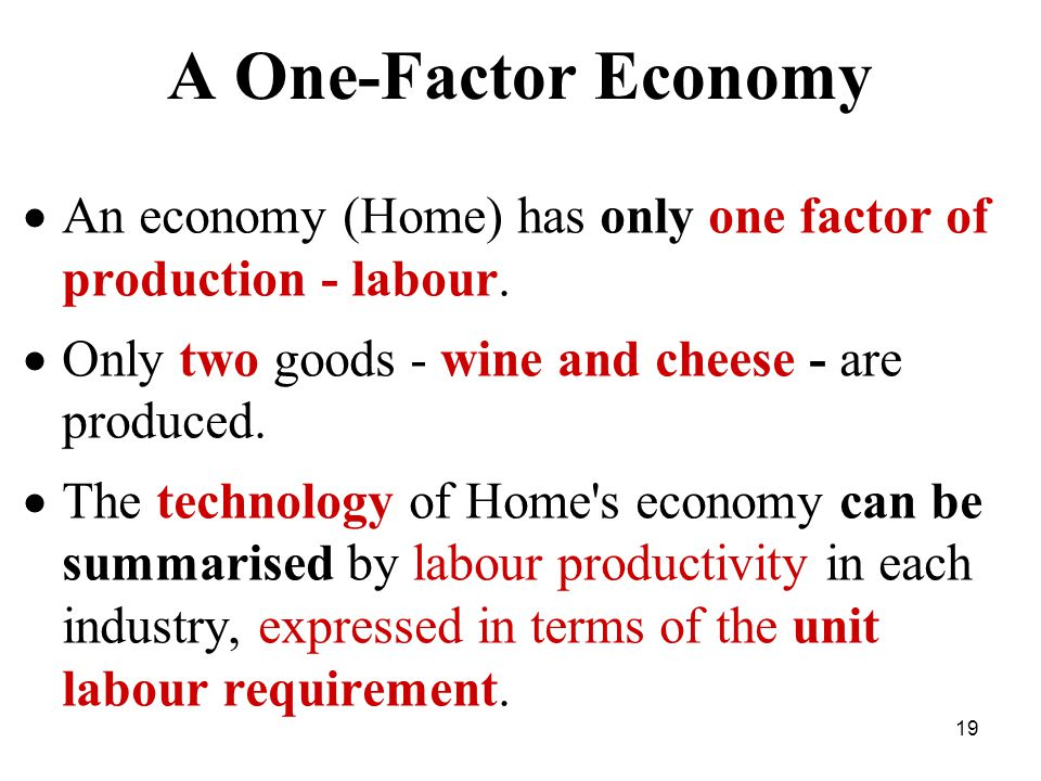 19 A One-Factor Economy  An economy (Home) has only one factor of production - labour.