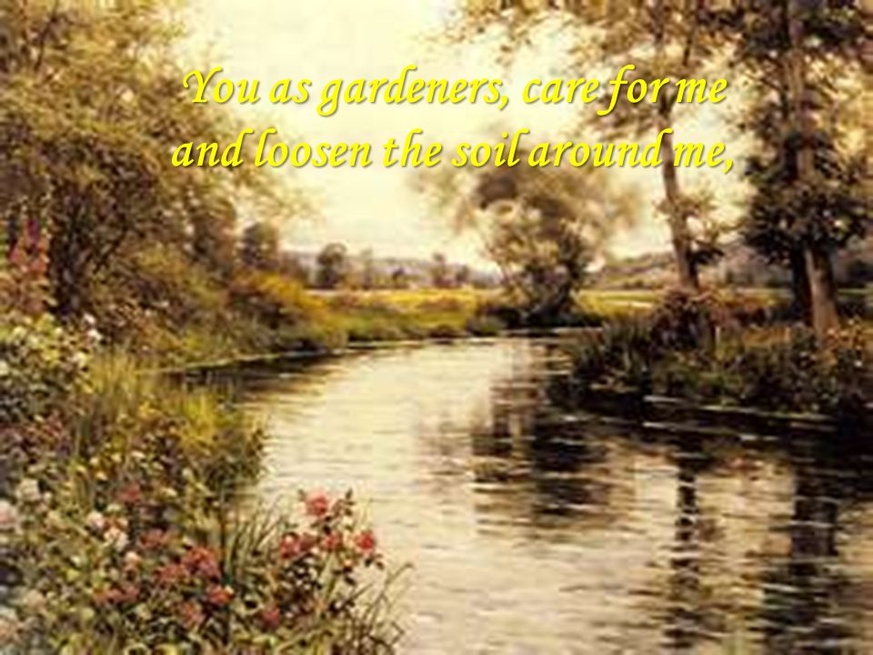 You as gardeners, care for me and loosen the soil around me,