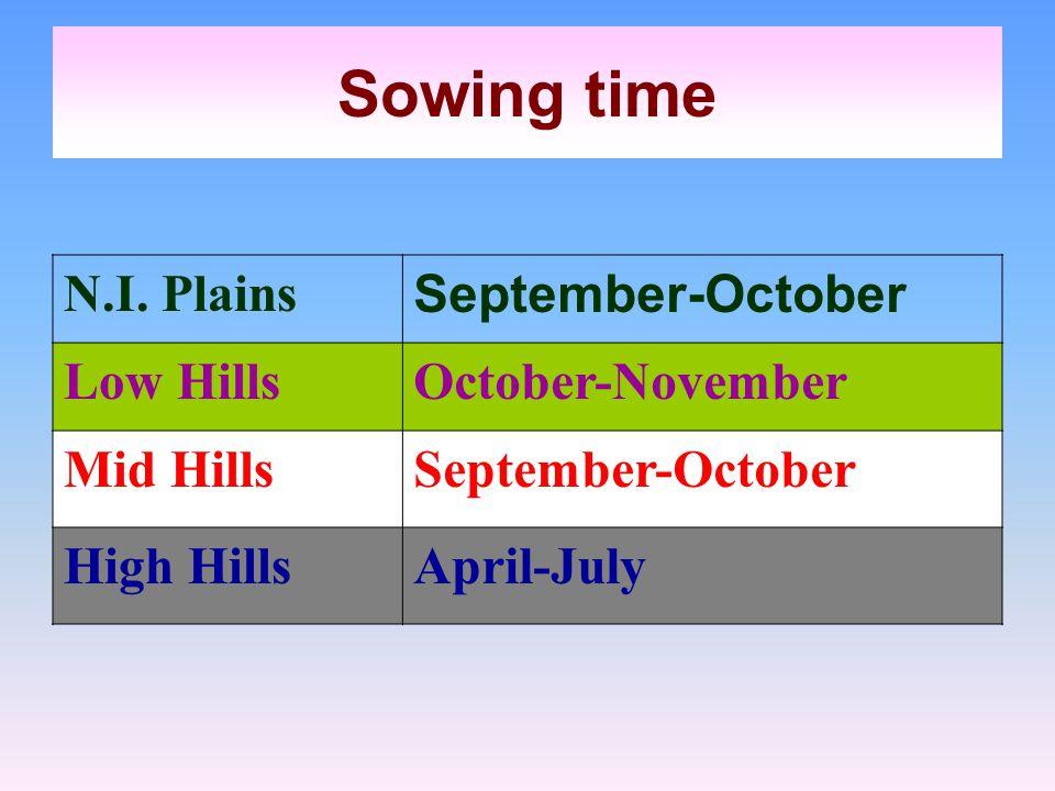 Sowing time N.I. Plains September-October Low HillsOctober-November Mid HillsSeptember-October High HillsApril-July