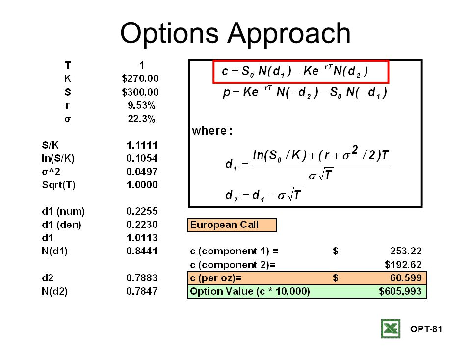 OPT-81 Options Approach