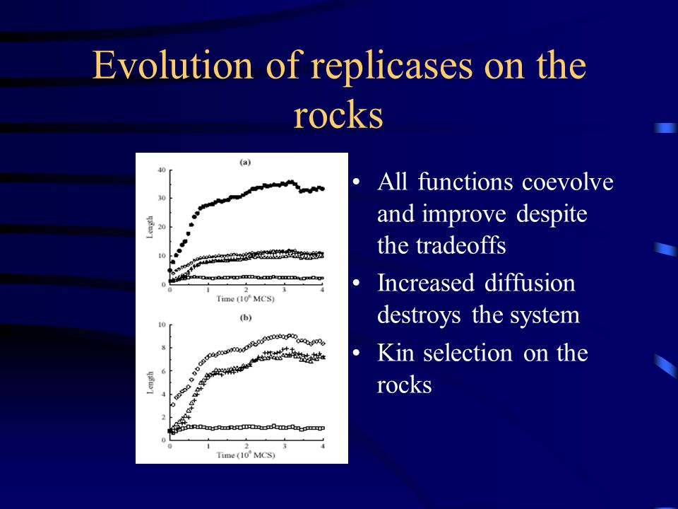 Evolution of replicases on the rocks All functions coevolve and improve despite the tradeoffs Increased diffusion destroys the system Kin selection on the rocks