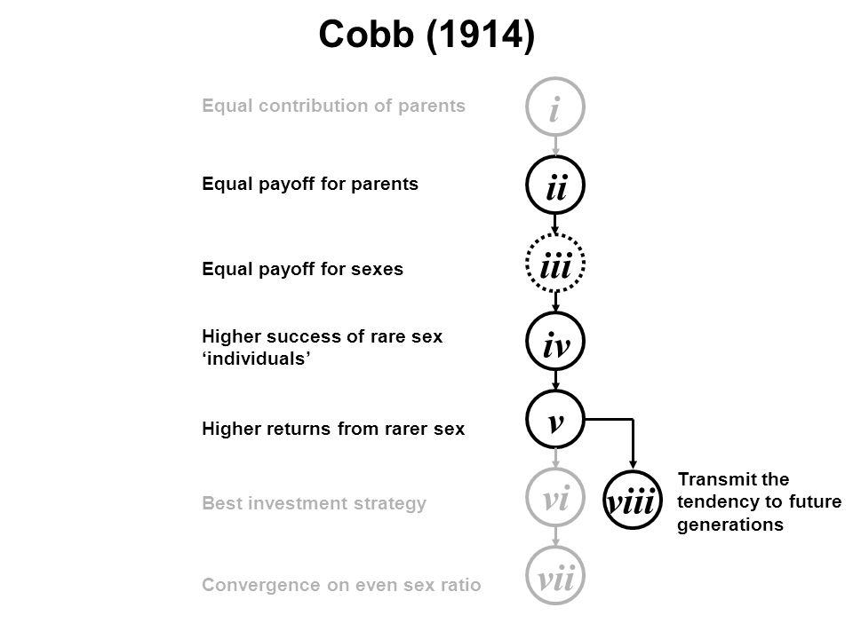 i ii iii iv v vi vii Equal contribution of parents Equal payoff for parents Equal payoff for sexes Higher success of rare sex 'individuals' Higher returns from rarer sex Best investment strategy Convergence on even sex ratio Cobb (1914) viii Transmit the tendency to future generations