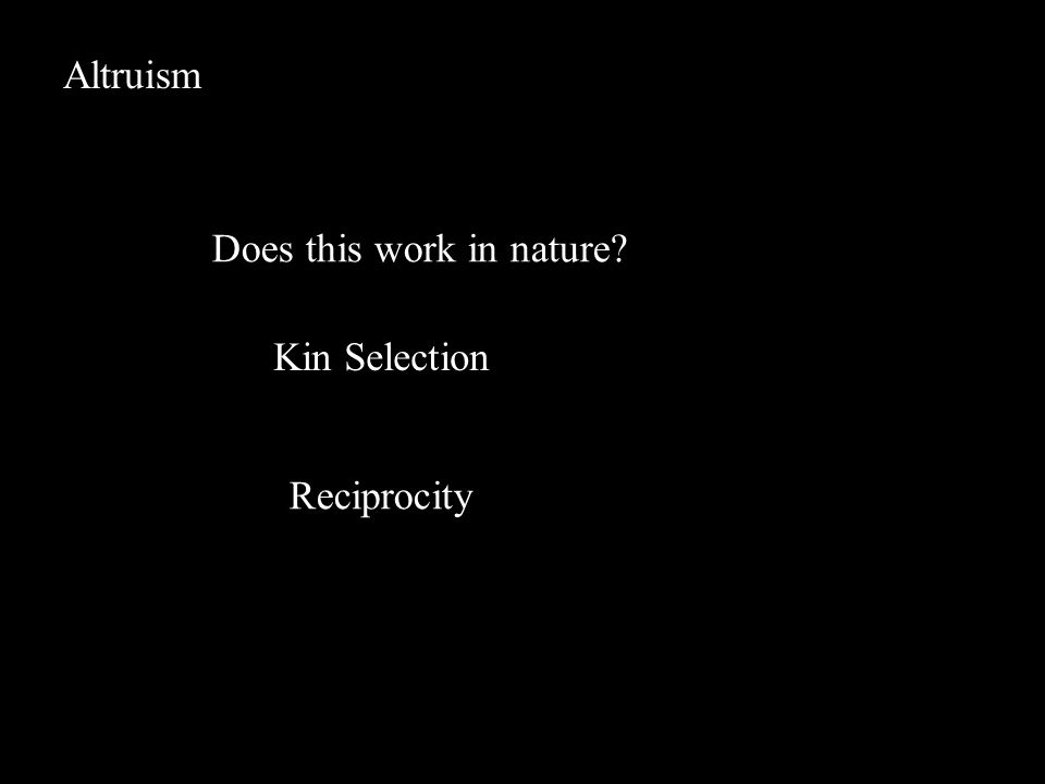 Altruism Does this work in nature? Kin Selection Reciprocity