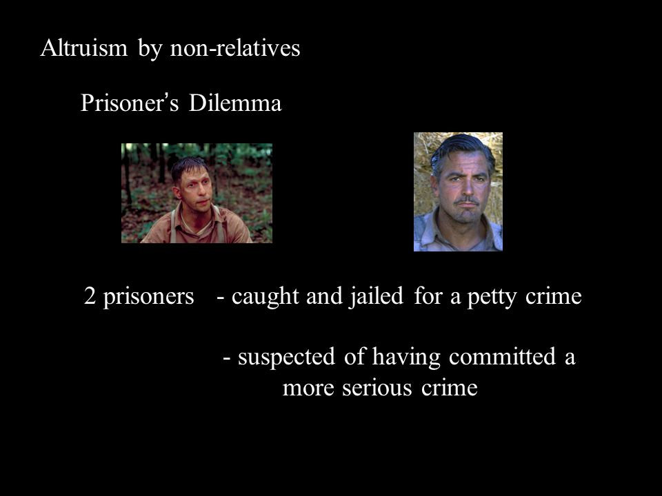 Altruism by non-relatives Prisoner's Dilemma 2 prisoners - caught and jailed for a petty crime - suspected of having committed a more serious crime