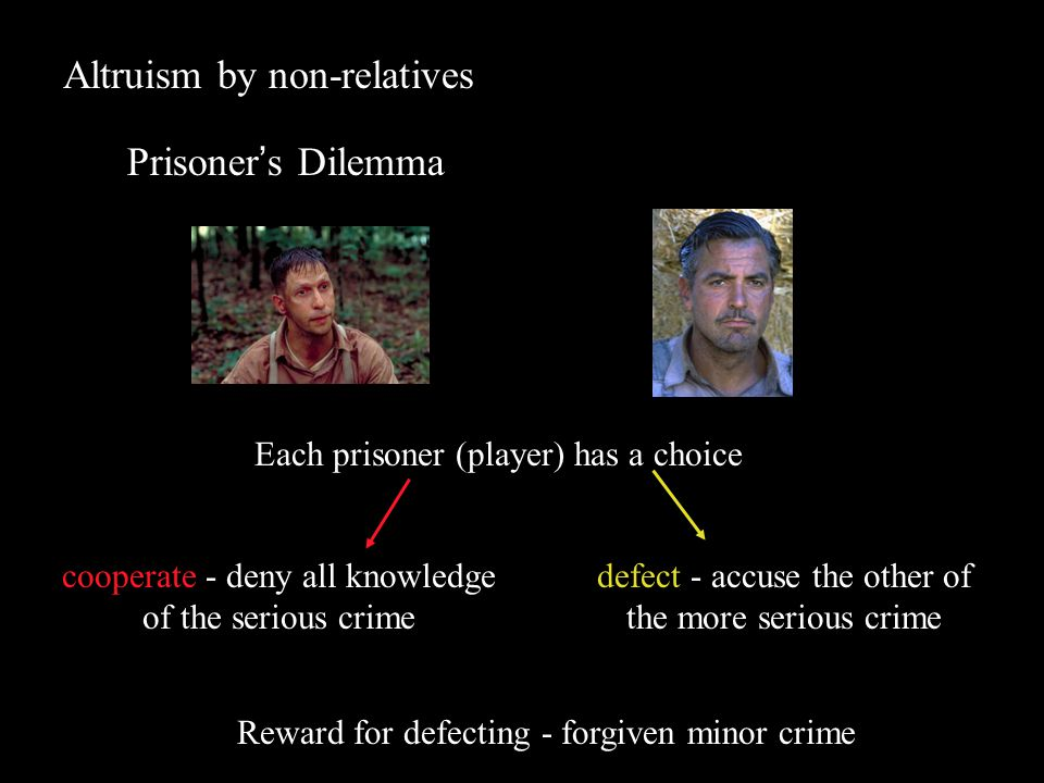 Altruism by non-relatives Prisoner's Dilemma Each strategy has a payoff Payoff depends on behaviour of the opponent 1.