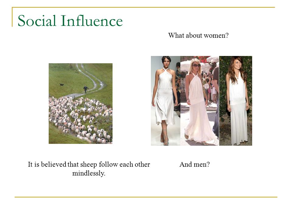 Social Influence It is believed that sheep follow each other mindlessly. What about women? And men?