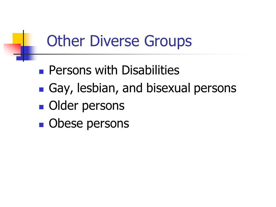 Other Diverse Groups Persons with Disabilities Gay, lesbian, and bisexual persons Older persons Obese persons