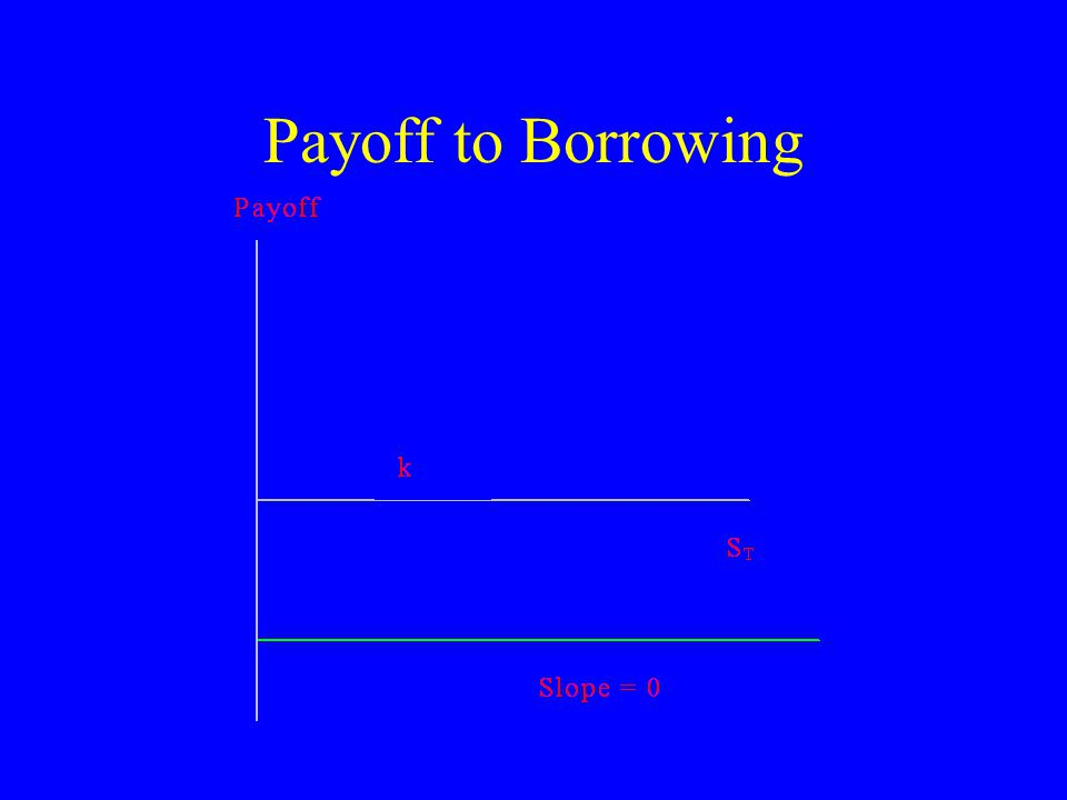 Payoff to Borrowing