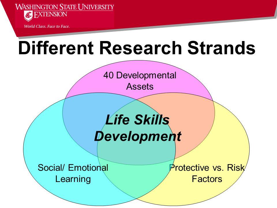 40 Developmental Assets Protective vs.