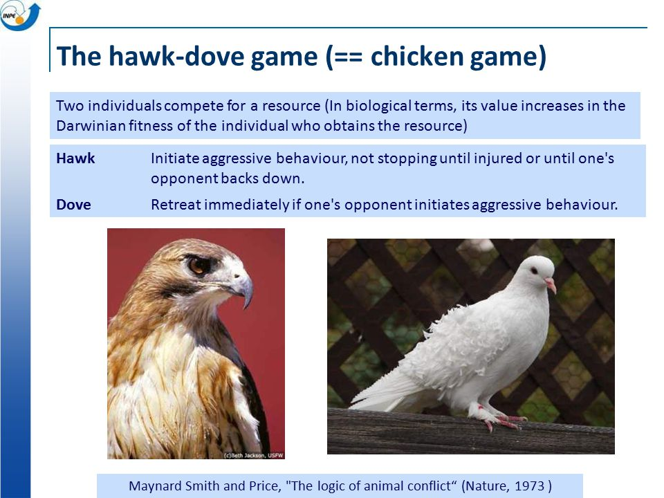 The hawk-dove game (== chicken game) Maynard Smith and Price, The logic of animal conflict (Nature, 1973 ) Two individuals compete for a resource (In biological terms, its value increases in the Darwinian fitness of the individual who obtains the resource) Hawk Initiate aggressive behaviour, not stopping until injured or until one s opponent backs down.