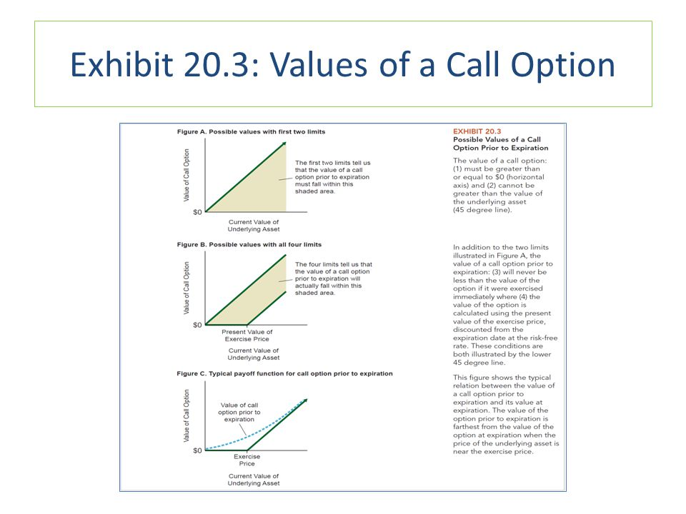 Exhibit 20.3: Values of a Call Option