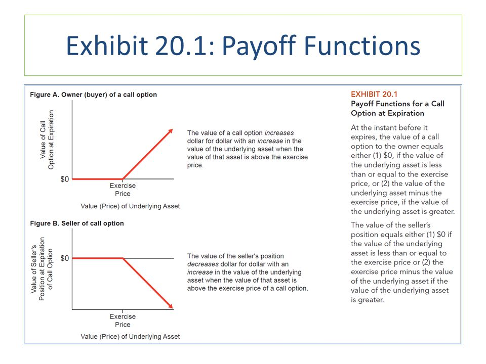 Exhibit 20.1: Payoff Functions