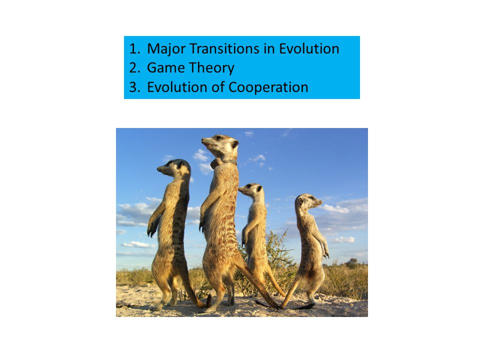 1.Major Transitions in Evolution 2.Game Theory 3.Evolution of Cooperation